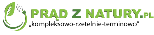 logo-pzn-pelne-1-2048x480